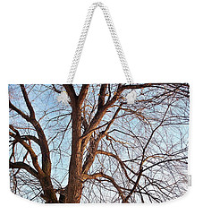 Winter Sunlight On Tree  Weekender Tote Bag by Chalet Roome-Rigdon