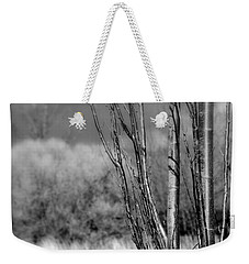 Weekender Tote Bag featuring the photograph Winters Branch by Kathleen Grace