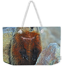 Woodchuck Weekender Tote Bag by Tony Beck