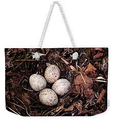 Woodcock Nest And Eggs Weekender Tote Bag by Angie Rea
