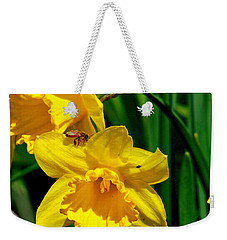 Weekender Tote Bag featuring the photograph Yellow Daffodils And Honeybee by Kay Novy