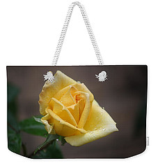 Weekender Tote Bag featuring the photograph Yellow Rose Of Texas by Donna  Smith