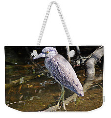 Yelow-crowned Night Heron 1 Weekender Tote Bag by Joe Faherty