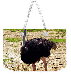 You Look At Me I Look At You Weekender Tote Bag by Patricia Griffin Brett
