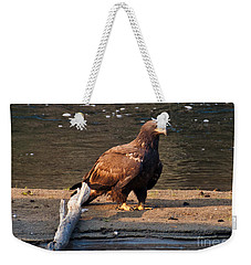 Young And Proud Weekender Tote Bag by Cheryl Baxter