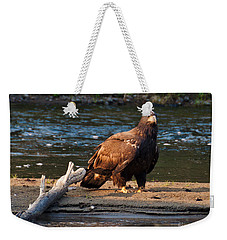 Young And Wise Weekender Tote Bag by Cheryl Baxter