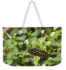 Zebra Butterfly Weekender Tote Bag by Marianne Campolongo