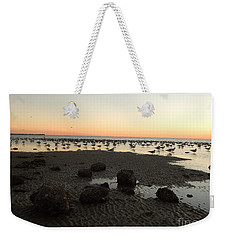 Beach Rocks Barnacles And Birds Weekender Tote Bag by Expressionistart studio Priscilla Batzell