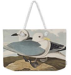 Kittiwake Gull Weekender Tote Bag
