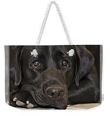 Labrador Retriever A1a Weekender Tote Bag