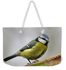 Weekender Tote Bag featuring the photograph     Blue Tit by Gavin Macrae