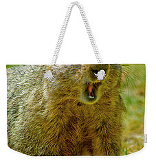 A Hungry Fellow  Weekender Tote Bag by Paul W Faust - Impressions of Light