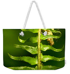 A Light In The Forest Weekender Tote Bag by Sean Griffin