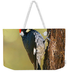 Acorn Woodpecker Weekender Tote Bag