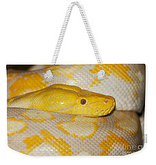 Albino Reticulated Python Weekender Tote Bag by Gerard Lacz