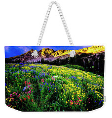 Weekender Tote Bag featuring the photograph Albion Basin by Norman Hall