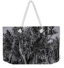 Ancient Bristlecone Pine Weekender Tote Bag