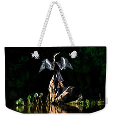 Anhinga Anhinga Anhinga, Pantanal Weekender Tote Bag by Panoramic Images