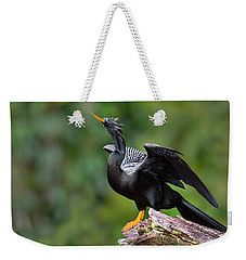 Anhinga Anhinga Anhinga Perching Weekender Tote Bag by Panoramic Images