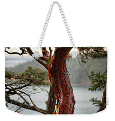 Arbutus Tree Weekender Tote Bag