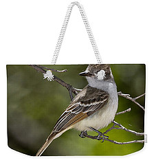 Ash-throated Flycatcher Weekender Tote Bag by Anthony Mercieca