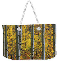Weekender Tote Bag featuring the photograph Aspen In Autumn At Mcclure Pass by Jetson Nguyen