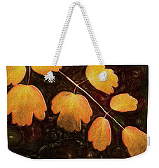 Weekender Tote Bag featuring the photograph Autumn Breeze by Paul Wear