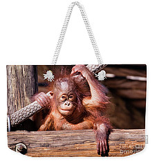 Baby Orangutan Weekender Tote Bag by Stephanie Hayes