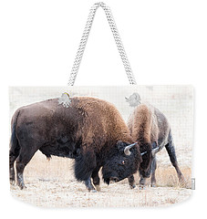 Battle Of The Bison In Rut Weekender Tote Bag by Yeates Photography