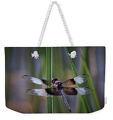 Weekender Tote Bag featuring the photograph Beauty In The Desert by Elaine Malott