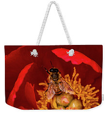 Weekender Tote Bag featuring the photograph Bee by Jay Stockhaus