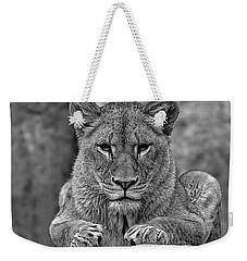 Big Cat Lion Collection Weekender Tote Bag