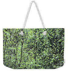 Weekender Tote Bag featuring the photograph Birch Leaves by Dariusz Gudowicz