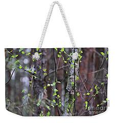 Weekender Tote Bag featuring the photograph Birch Tree by Dariusz Gudowicz