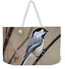 Black Capped Chickadee Weekender Tote Bag by Amy Porter