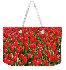 Weekender Tote Bag featuring the photograph Blooming Red Tulips by Hans Engbers