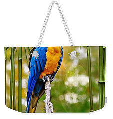 Weekender Tote Bag featuring the photograph Blue And Yellow Macaw by Elaine Manley