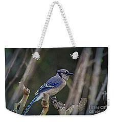 Blue Bird Of Happiness Weekender Tote Bag