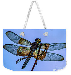 Blue Dragonfly Weekender Tote Bag by Toma Caul