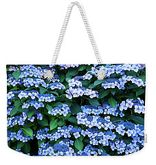Weekender Tote Bag featuring the photograph Miksang 12 Blue Hydrangea by Theresa Tahara