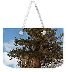 Bristlecone Pine 5 Weekender Tote Bag