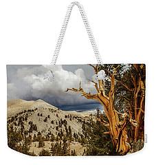 Bristlecone Pine Tree 7 Weekender Tote Bag