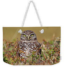 Burrowing Owl Weekender Tote Bag
