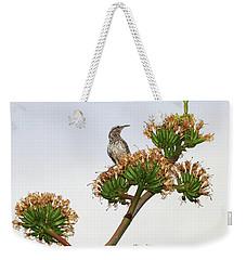 Cactus Wren Weekender Tote Bag by Elaine Malott