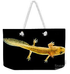 California Giant Salamander Larva Weekender Tote Bag by Dant� Fenolio