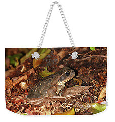 Weekender Tote Bag featuring the photograph Cane Toad by Breck Bartholomew