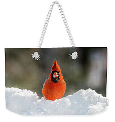Cardinal In Snow Weekender Tote Bag