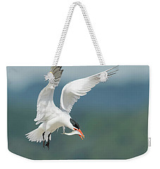 Caspian Tern With Fish Weekender Tote Bag