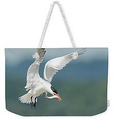 Caspian Tern With Fish Weekender Tote Bag