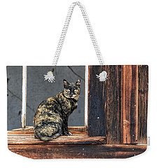Cat In A Window Weekender Tote Bag